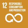 E_SDG-goals_icons-individual-rgb-12